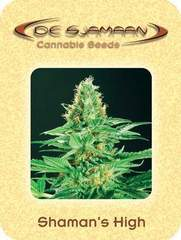 Shamans high marijuana seeds