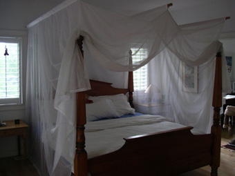 EMF bed canopy baby