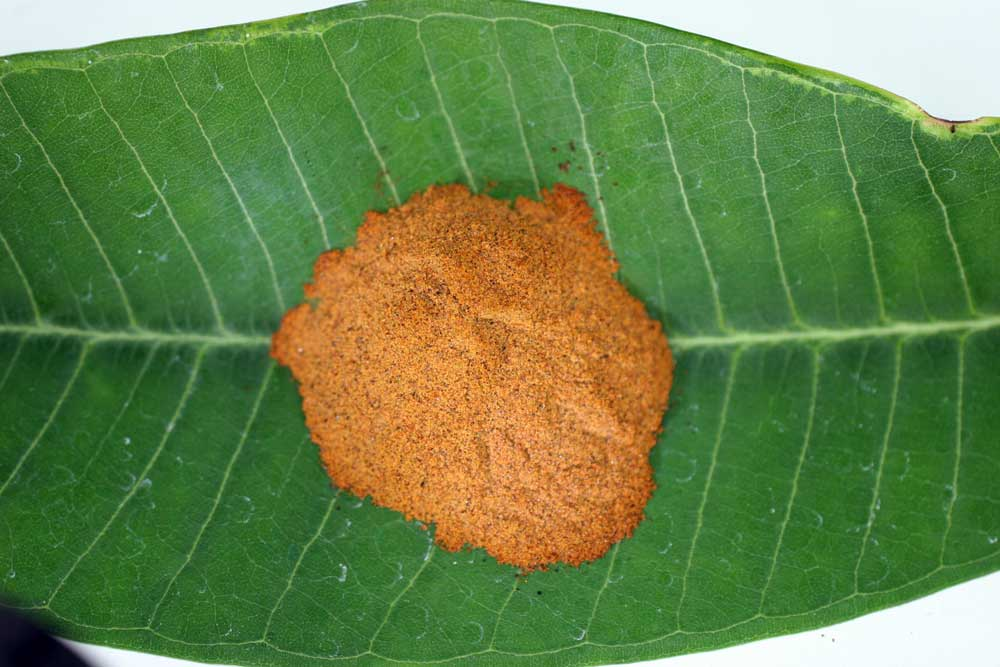 Kratom Most Like Vicodin East Nassau
