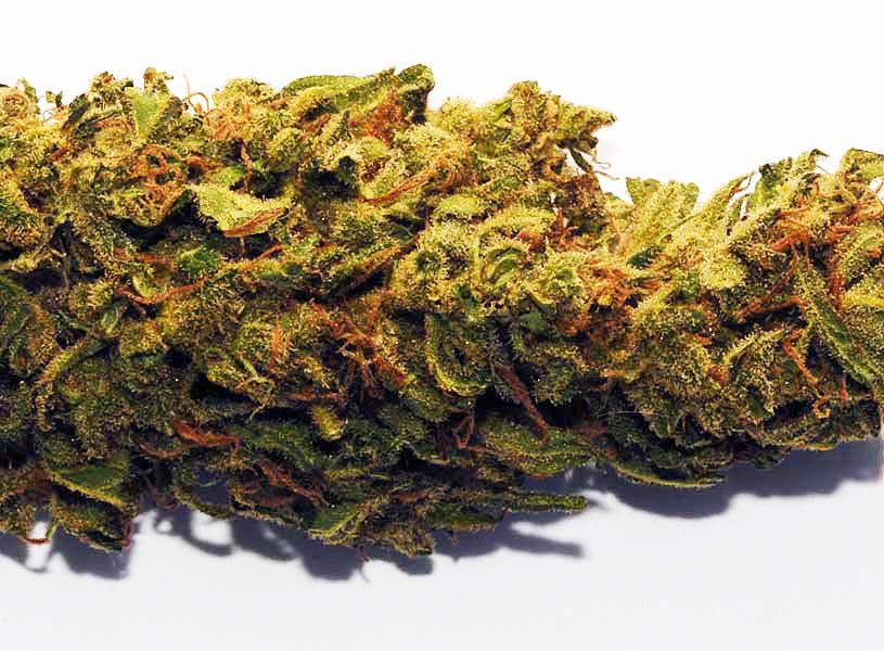 Best Cannabidiol To Buy Reviews